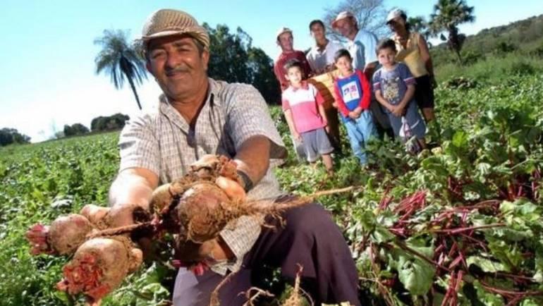 Agricultura y Alimentos